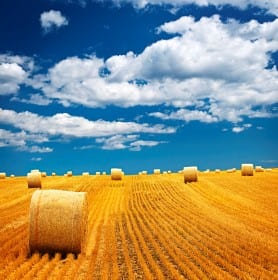 $425k in Canadian Government Funding Supports AgriTech Development